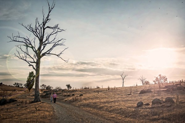 Photography by Mark Perkins of Realvision Photography Goulburn (2)